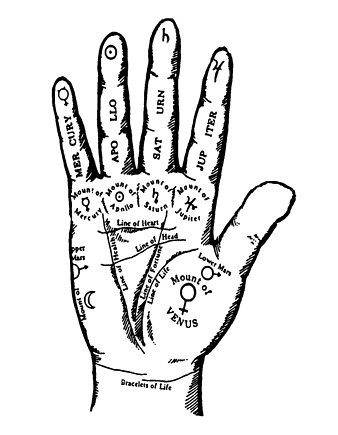 How To Read Your Palms